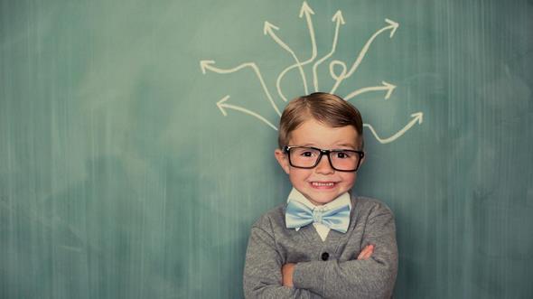 Üstün Zekalı Çocuklar,Üstün Zekâlılar Öğretmenliği, Üstün Zekalılar Eğitimi Lisans Programı
