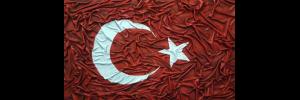 Şanlı Bayrağımız Projesi, bayrak projesi