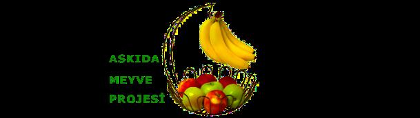 askıda-meyve-projesi-askıda meyva, uygulaması