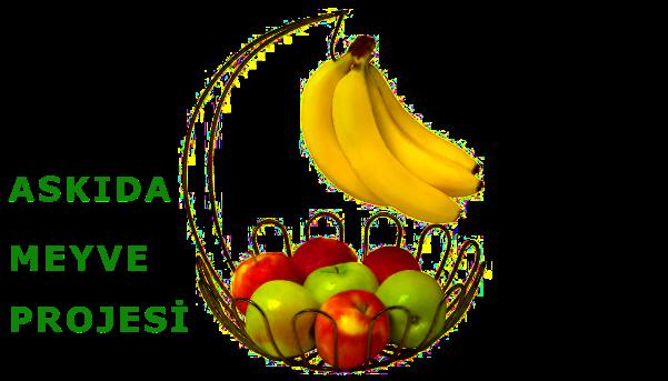 askıda meyve, projesi, uygulamsı