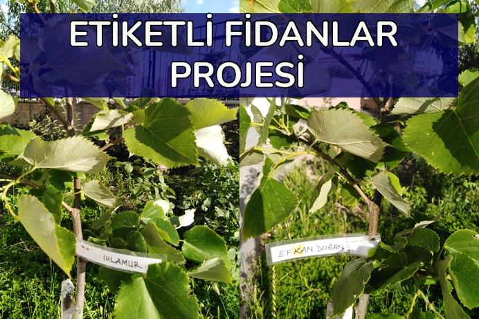 Benim de Fidanım Var, Fidana Etiketlendiniz, İşte Bu Benim Ağacım Projesi
